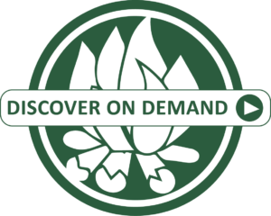 discover-on-demand-graphic