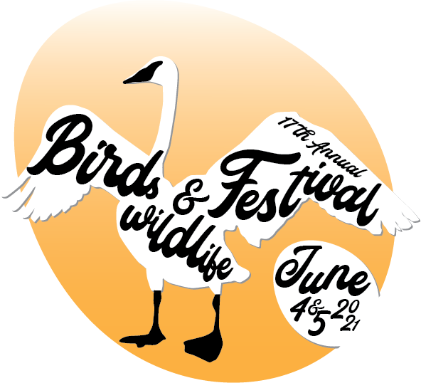 bird fest icon 2021 (1)